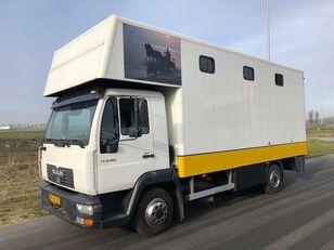 xe tải chở gia súc MAN LE8-180